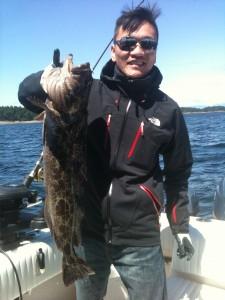 Nice Ling Cod!