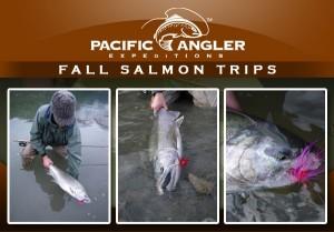 Fall Salmon trips