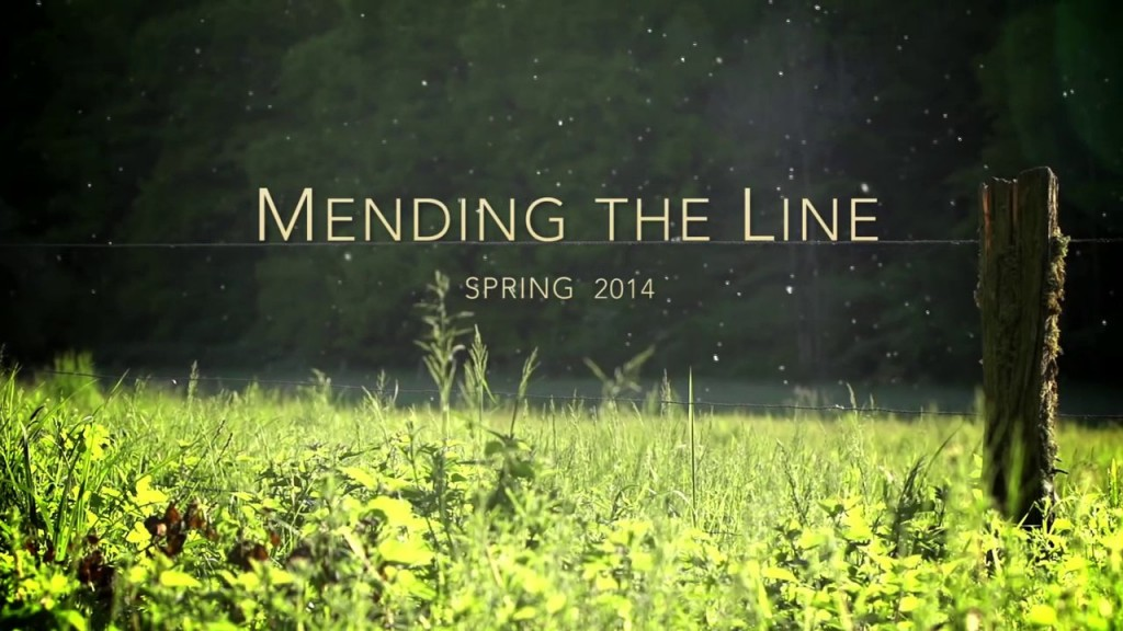 Mending the Line