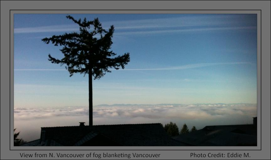 N.Vancouver Fog Blanket_2014