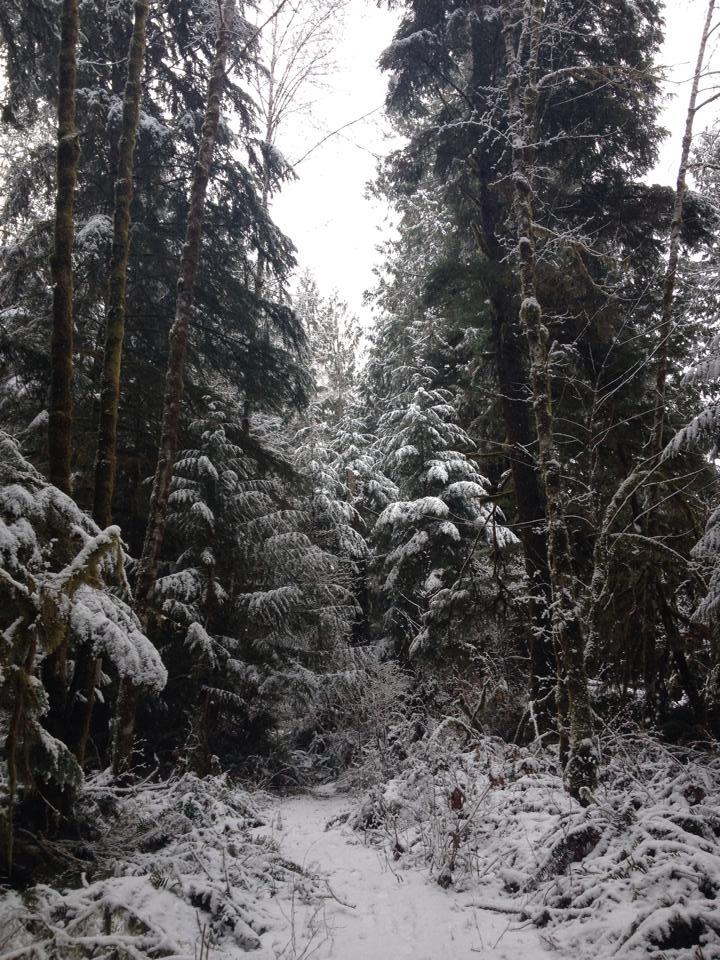 Max_Island Hiking to river_Feb 2014