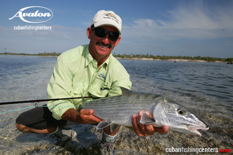 avalonbonefish