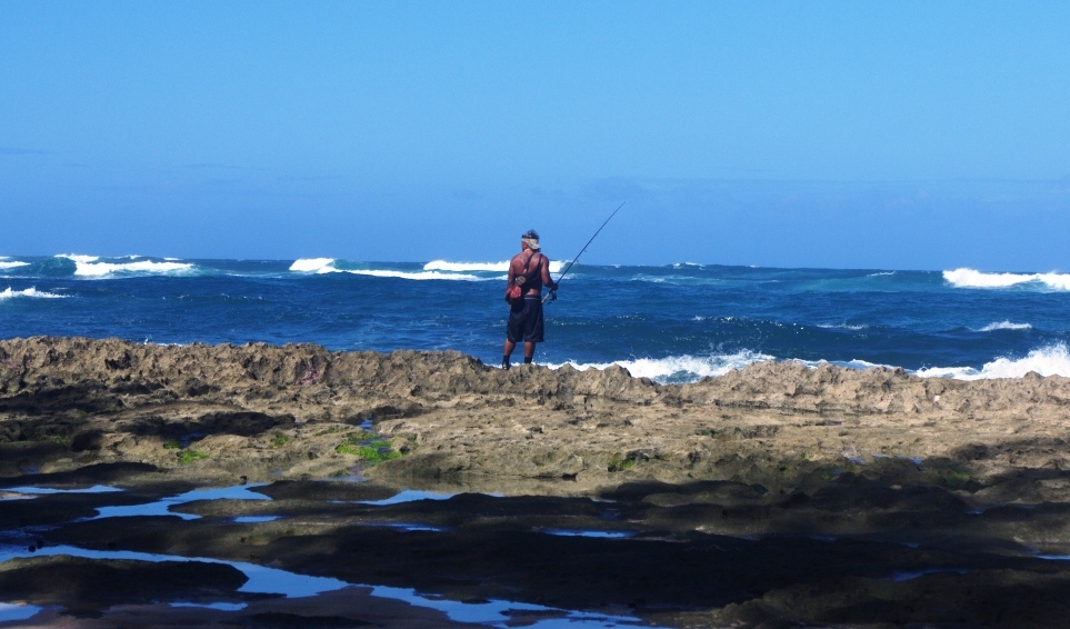 Pacific angler friday fishing report february 6 2015 for Shore fishing oahu