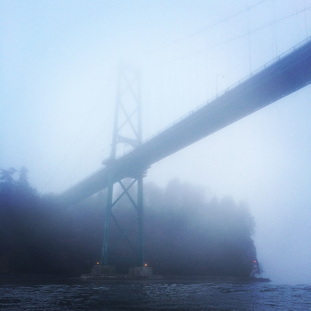 Foggy mornings made for some interesting harbour fishing this week.