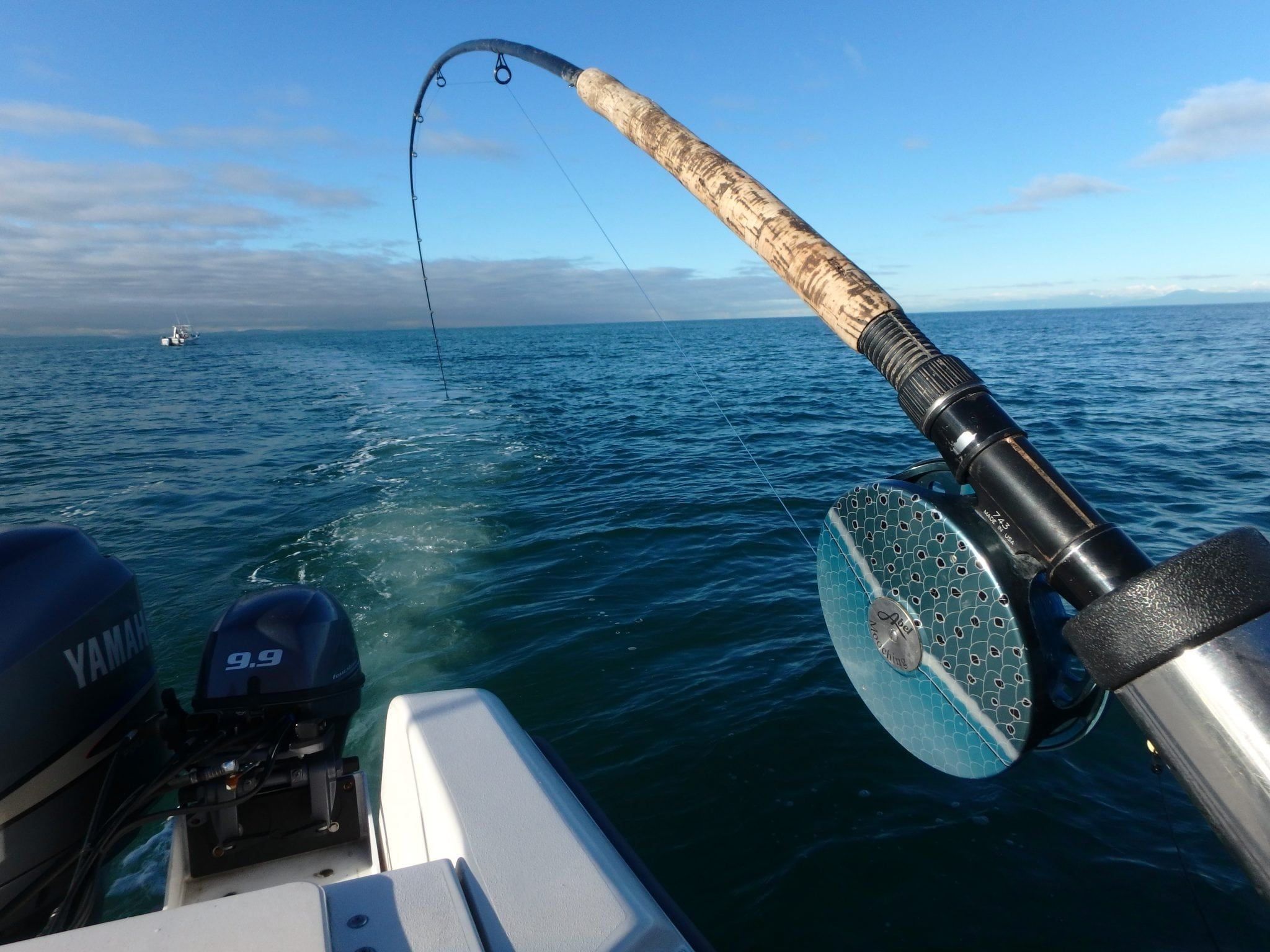 e6748ba8687a Pacific Angler Friday Fishing Report  January 1