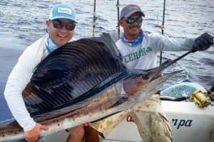 Sailfish 2