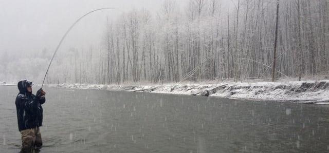 Squmish Winter Fly fishing 1