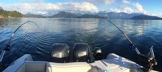 Winter Chinook Fishing Report