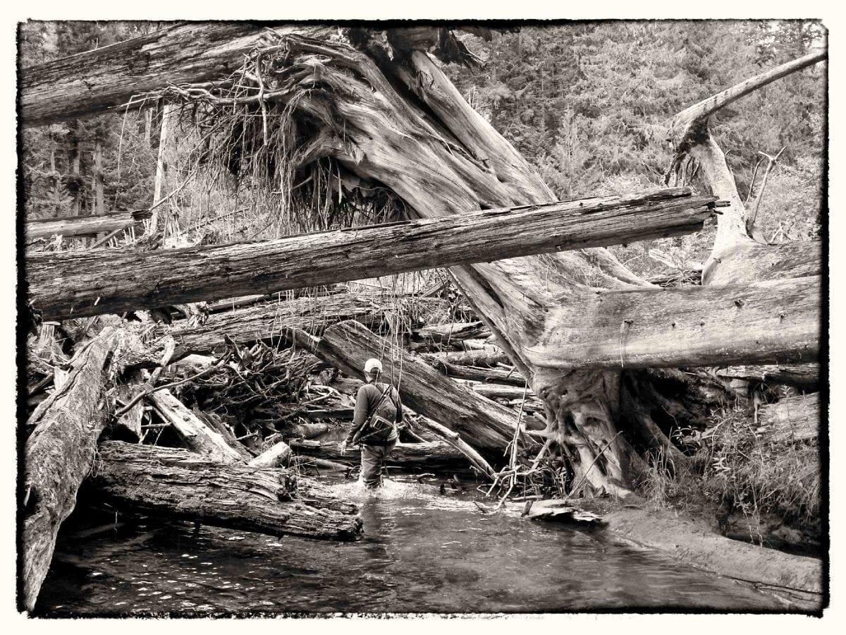Skagit_River_Fishing_Fly_Fishing