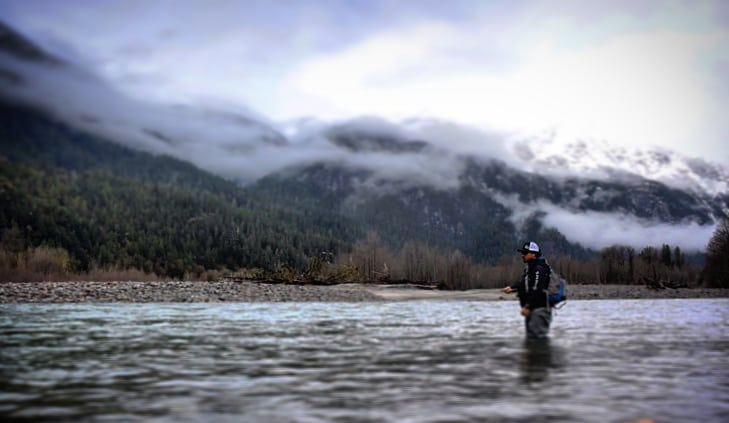 Pacific_Angler_Squamish_River