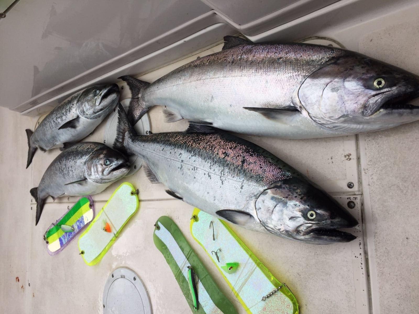 Saltwater_Fishing_Trips_British_Columbia
