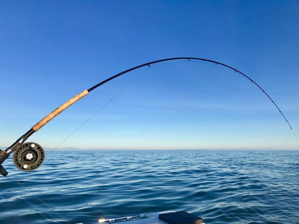 Gulf_Island_Salmon_Fishing